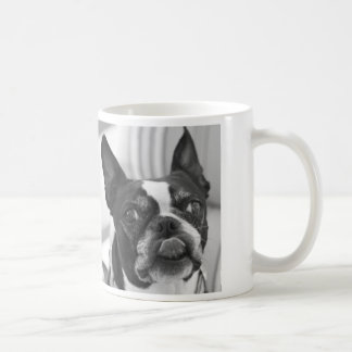 Boston Terrier photo on Custom Value Mug