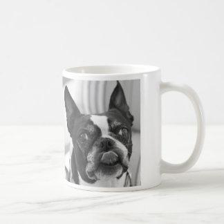 Boston Terrier photo on Custom Value Mug