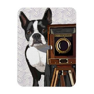 Boston Terrier Photographer 2 Magnet