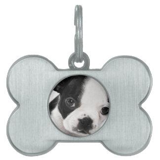 Boston Terrier Placa De Nombre De Mascota
