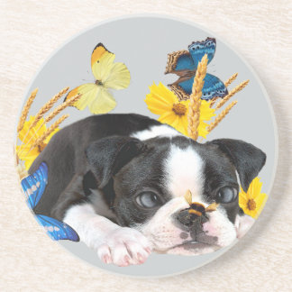 Boston Terrier Play Day Coaster
