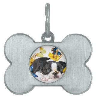 Boston Terrier Play Day Pet Name Tag