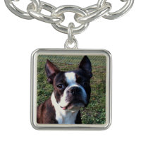 Boston_Terrier.png Bracelets