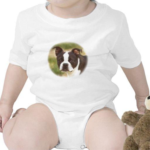 Boston Terrier:  Poca belleza Traje De Bebé