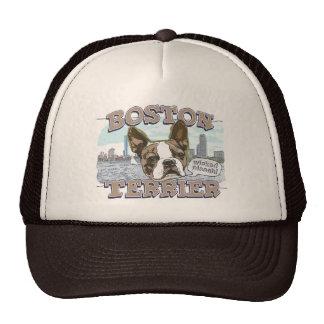 Boston Terrier por los estudios de Mudge Gorro