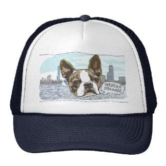 Boston Terrier por los estudios de Mudge Gorros