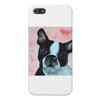 Boston Terrier Portrait iPhone SE/5/5s Case