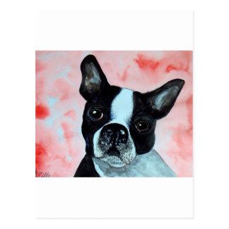 Boston Terrier Portrait Postcard