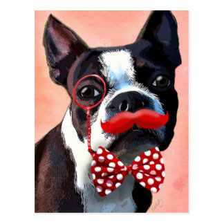 Boston Terrier Portrait with Red Bow Tie and 3 Postcard