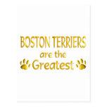 Boston Terrier Postales