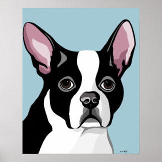 Boston Terrier Posters
