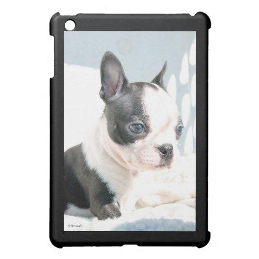 Boston Terrier Pup iPad Mini Cases