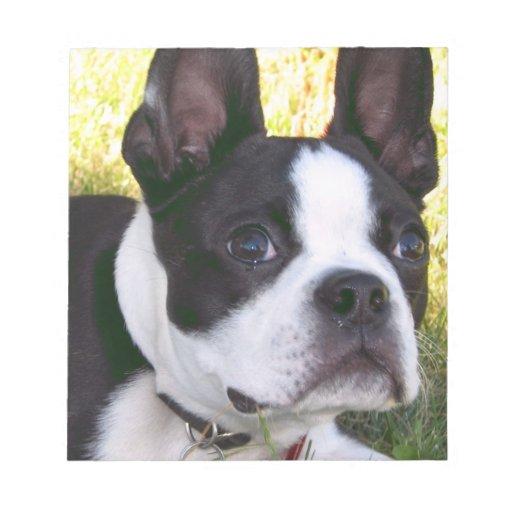 Boston Terrier Pup Notepad