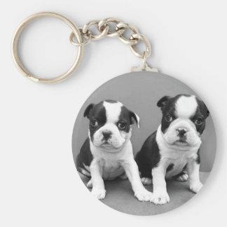 Boston Terrier Puppies keychain