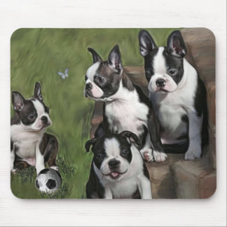 Boston Terrier Puppies Mouse Mats
