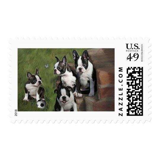 Boston Terrier Puppies Postage