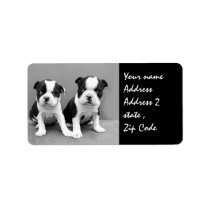 Boston Terrier Puppies shipping label