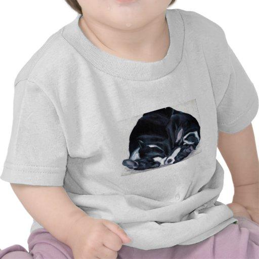 Boston Terrier Puppies Tee Shirts