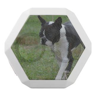 Boston Terrier Puppy White Boombot Rex Bluetooth Speaker