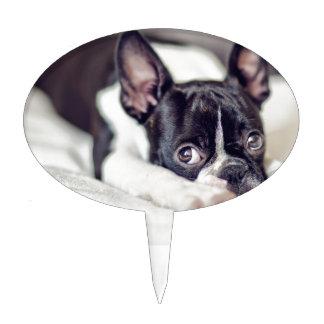 Boston Terrier Puppy Cake Topper