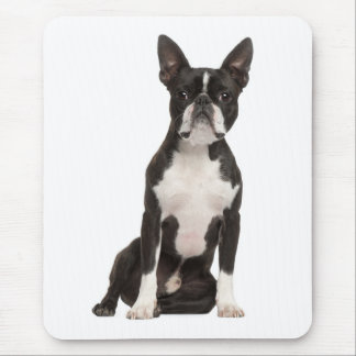 Boston Terrier Puppy Dog Computer Mousepad