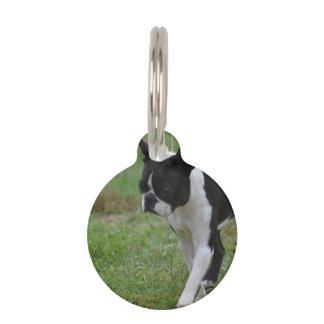 Boston Terrier Puppy Pet ID Tags