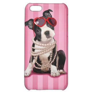 Boston Terrier Puppy iPhone 5C Covers