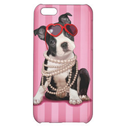 Case Savvy Matte Finish iPhone 5C Case with Boston Terrier Phone Cases design