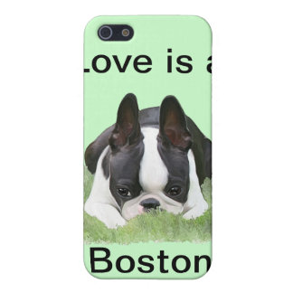 Boston terrier puppy resting case for iPhone 5