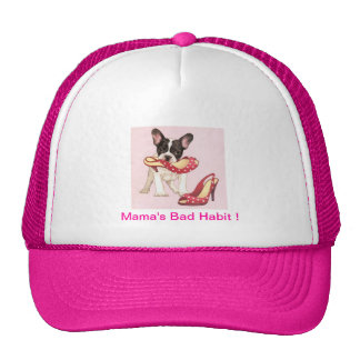 Boston Terrier Puppy With Shoes Hat