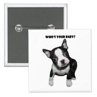 Boston Terrier:  ¿Quién es su bebé? Pin