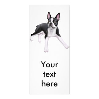 Boston Terrier Rack Card