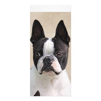 Boston Terrier Rack Card Design