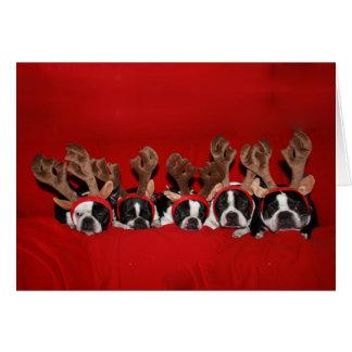 Boston Terrier Reindeer Christmas Card