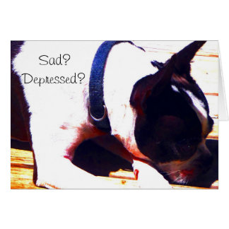 Boston Terrier Sad depressed Lets Go Shopping Greeting Cards