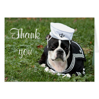 Boston terrier sailor dog card