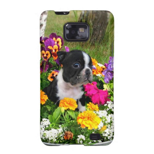 Boston Terrier Samsung Galaxy S Cover
