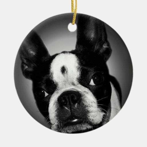 Boston Terrier Santa dog Ornaments