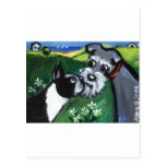Boston Terrier & Schnauzer sniff Postcard