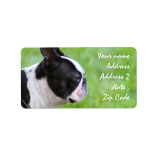 Boston Terrier Shipping Labels