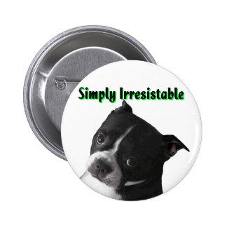 Boston Terrier:  Simplemente irresistible Pin