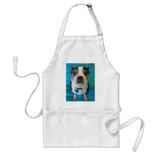 Boston Terrier sitting on a bed Adult Apron
