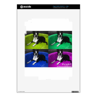 Boston Terrier Skins For The iPad 2