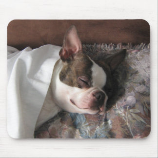 Boston Terrier Snoozing Mouse Mats