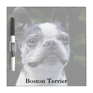 Boston Terrier Square Dry Erase Board