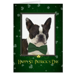 Boston Terrier St. Patrick's Day Card