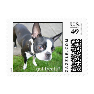 boston terrier stamp , got treats?