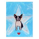 Boston Terrier Star Love Postcard
