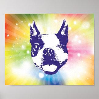 Boston Terrier Sunburst Poster