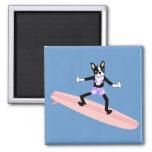 Boston Terrier Surfer Girl 2 Inch Square Magnet